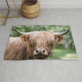 Portrait of a cute Scottish Highland Cattle Rug