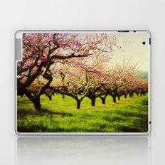 Orchard play Laptop & iPad Skin