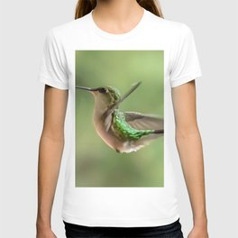 More Hummingbird Love T-shirt