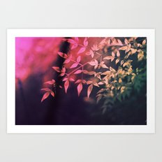 Cross processing Art Print
