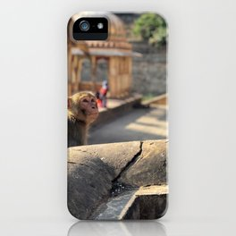 Basking in the Sun at the Monkey Temple iPhone Case