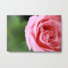 Light Pink Rose Soft Focus Abstract Photograph Metal Print