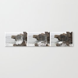 A wave in three parts Canvas Print