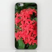 indonesia iPhone & iPod Skins featuring Flower (Bali, Indonesia) by Christian Haberäcker - acryl abstract