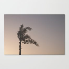 Palm Tree in the Breeze Canvas Print