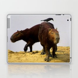 Capybaras Laptop & iPad Skin