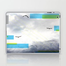 Birds and Lines Laptop & iPad Skin