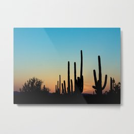 Sunset Cacti 2 Metal Print