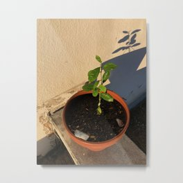 Resilient Metal Print