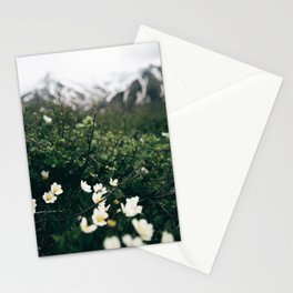 Baby Blooms Stationery Cards