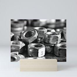 Some Nuts Mini Art Print