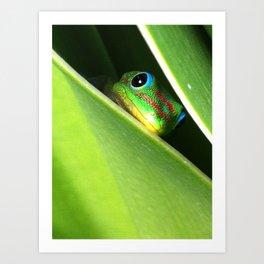 Eyes in the Grass Art Print