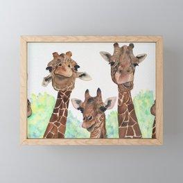 Giraffe's Family Portrait by Maureen Donovan Framed Mini Art Print