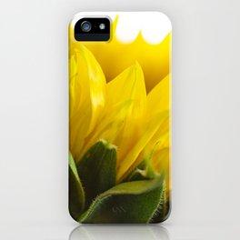 Sunflower V iPhone Case