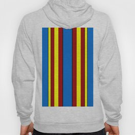 Super-Curtains Hoody
