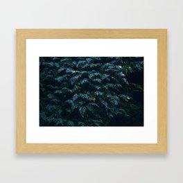 fern field Framed Art Print