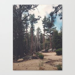 Mount San Jacinto State Park Canvas Print