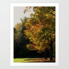 The Beginning of Fall Art Print