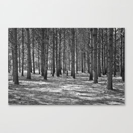 Lost in the Woods Black & White Canvas Print