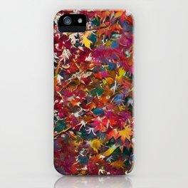 Colors 168 iPhone Case