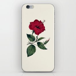 Vintage ivory white red green botanical flower iPhone Skin