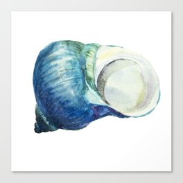 Blue Shell Canvas Print