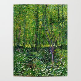 Vincent Van Gogh Trees and Undergrowth 1887 Poster