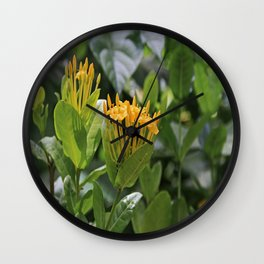 Reinventing Mona Wall Clock