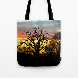 Winter sunset behind a curly tree Tote Bag