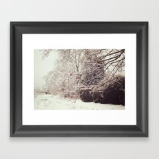 Ice Storm Framed Art Print
