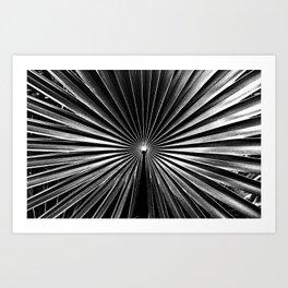 Tropical Darkroom #152 Art Print