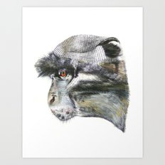 Sykes Monkey! Art Print