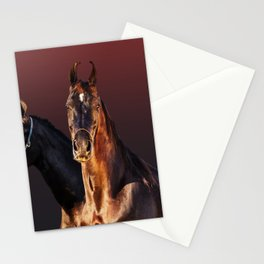 horse collection Stationery Cards