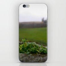 Ancient Windowsill iPhone & iPod Skin