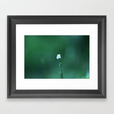 White In Green Framed Art Print