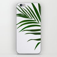 fern iPhone & iPod Skins featuring Fern by Tamsin Lucie