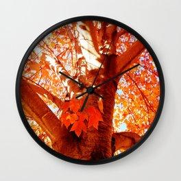 BRIGHT SUNSHINEY FALL DAY Wall Clock