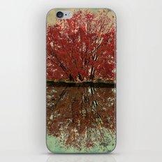 Landscape ~ Reflection iPhone & iPod Skin
