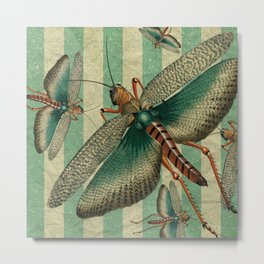 5 Grasshoppers Metal Print
