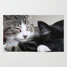 Kitty! Rug