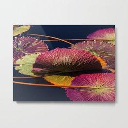 Colorful Nymphaea Tanzanite Lily Pad Leaves Metal Print