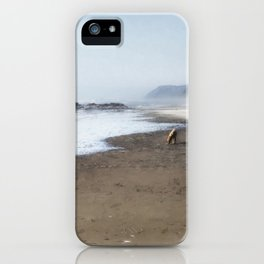 A Sandy World At Her Feet iPhone Case