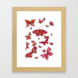 Butterfly Spread Framed Art Print