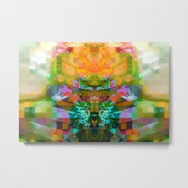 The Robot Alien Driving spaceship With Angry Face and Toad's Eyes  Metal Print