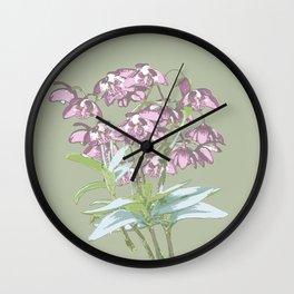 Pink Rock Lily Dendrobium kingianum Wall Clock