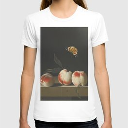 Adriaen Coorte - Still life with three peaches on a stone ledge and a butterfly T-shirt
