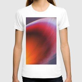 snow storm T-shirt