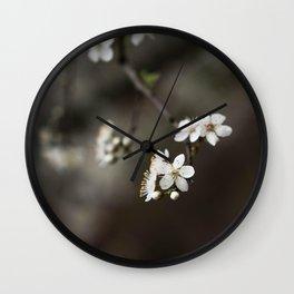 Flower Photography by Pourya Sharifi Wall Clock
