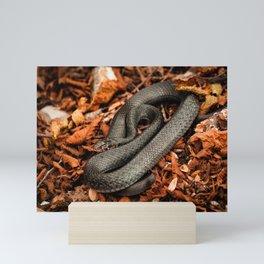 The Green Whip Snake Mini Art Print