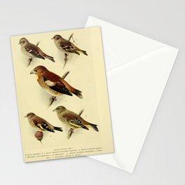 Lesser Redpoll Siskin Hawfinch British Goldfinch Greenfinch17 Stationery Cards